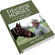 Educating Horses